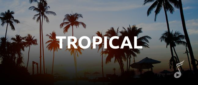 Playlist Tropical